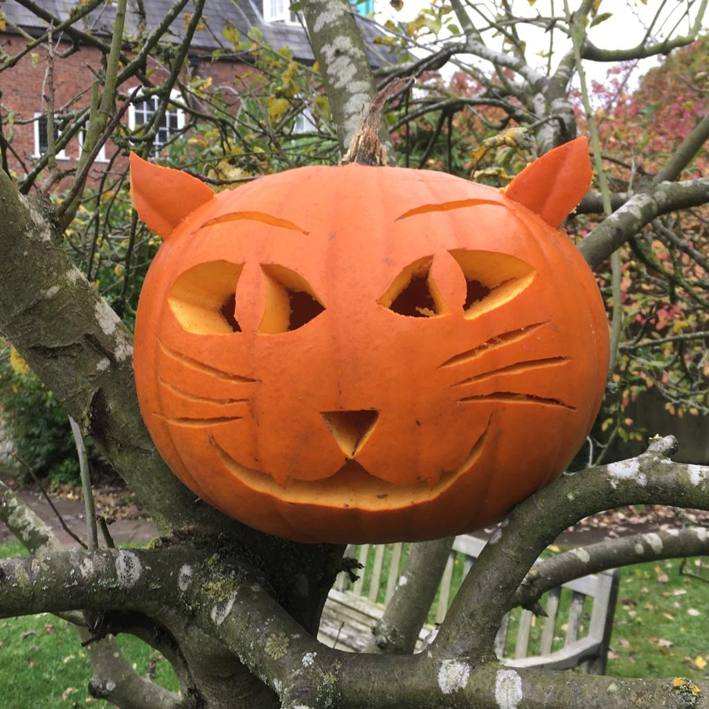 Halloween at Worcestershire County Museum